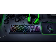 Razer blackwidow - mechanical gaming keyboard - russian layout (green switch)
